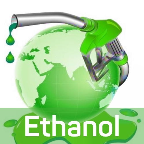 Govt  approves fixing higher ethanol price for sugar season