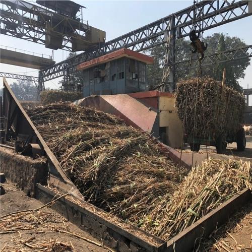 Sugar mills conclude crushing season in Maharashtra; sugar production at 60.98 lakh tonnes