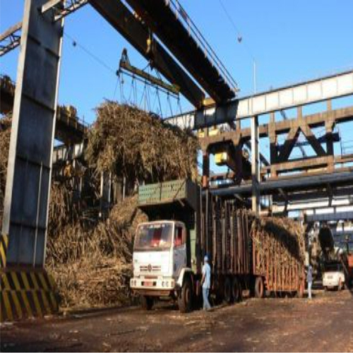 Pandavapura sugar factory to commence cane crushing from today