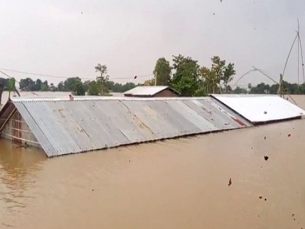 Visual from Nagaon district in Assam (Photo/ANI)