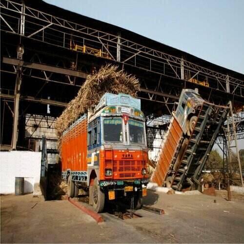 trucks in sugar factory